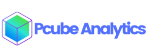 Pcube Analytics - Forward-thinking Boutique Professional Services Agency in India